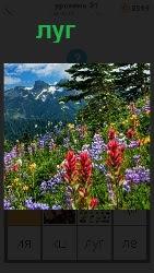460 слов 4 луг на котором растут различные цветы 21 уровень
