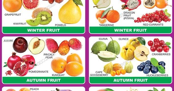 Spectrum Educational Charts Chart 672 Seasonal Fruits