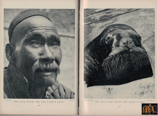 The Man and the Sea Lion - Lilliput Magazine Mar. 1938