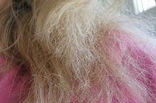 Spalone włosy - jak je uratować? Historia Eweliny