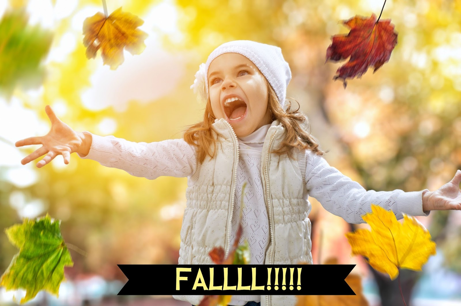 The Primary Pack Fall Leaves Lesson For Pre K