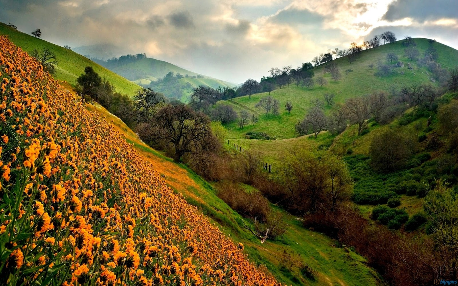 HD Wallpapers: Beautiful HD Valley Wallpapers