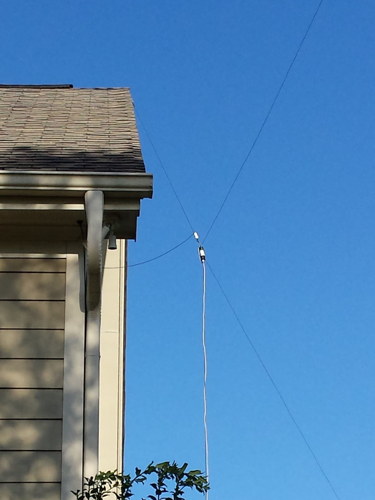 Are not Carolina windom amateur radio antenna confirm. join