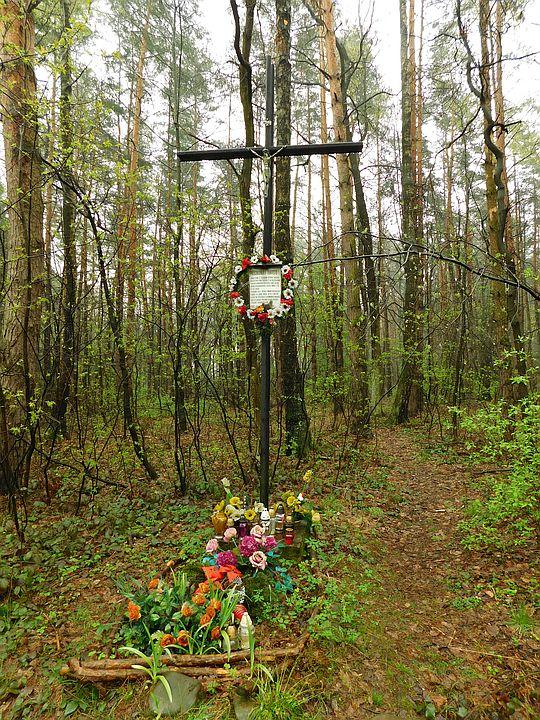 Symboliczna mogiła w Księżym Lesie.
