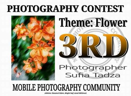Mobile PhotoGrafi | Jom Kita Belajar Teknik Basic Edit Gambar