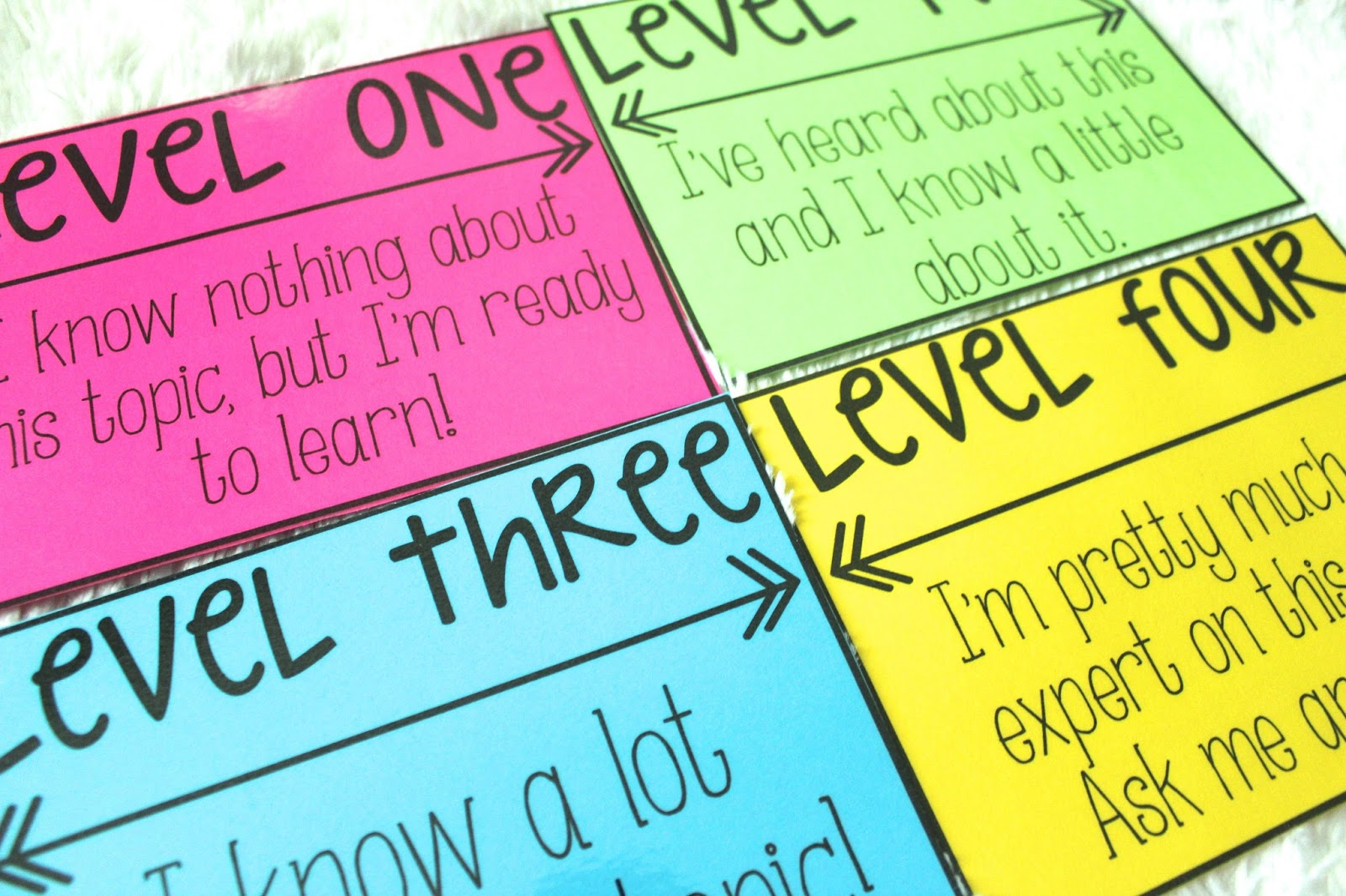 Life in Fifth Grade: Student Self Assessing with Levels of ...