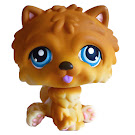 Littlest Pet Shop Multi Packs Chow Chow (#117) Pet