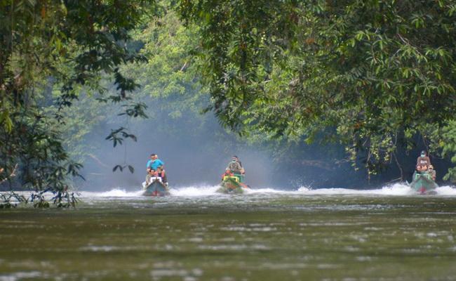Xvlor Bukit Baka Bukit Raya National Park is the heart of Borneo
