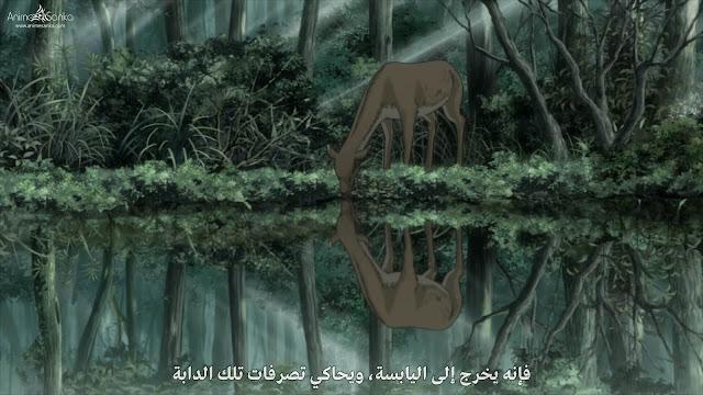 انمي Mushishi Season 2 مترجم بلوراي 1080p أون لاين تحميل و مشاهدة مباشرة