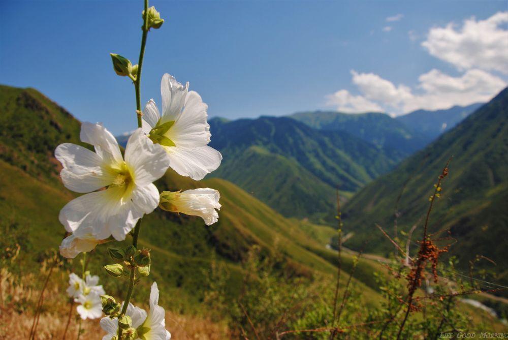 Kazachstan południowy - tam gdzie życie toczy się wieczorami.