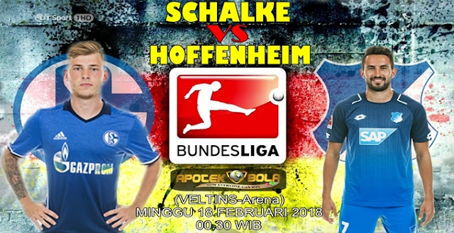 Prediksi Schalke 04 vs Hoffenheim 18 Februari 2018