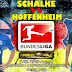 Agen Bola Terpercaya - Prediksi Schalke 04 vs Hoffenheim 18 Februari 2018