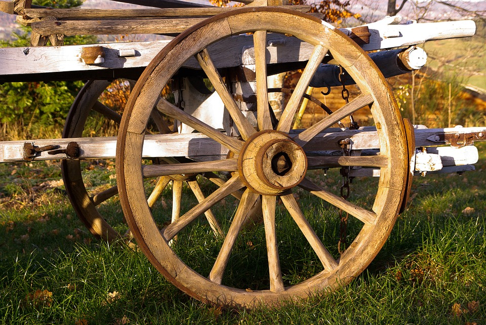 Reinventando a Roda - Todos os Dias