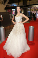 Rukshar Mir designer Anarkali Gown at 64th Jio Filmfare Awards South  2017 ~  Exclusive 086.JPG