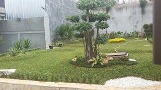 Tukang Taman di Cinere,Jasa Pembuat Taman di Cinere,Jasa Renovasi Taman di Cinere,Jasa Pembuat Taman Minimalis di Cinere