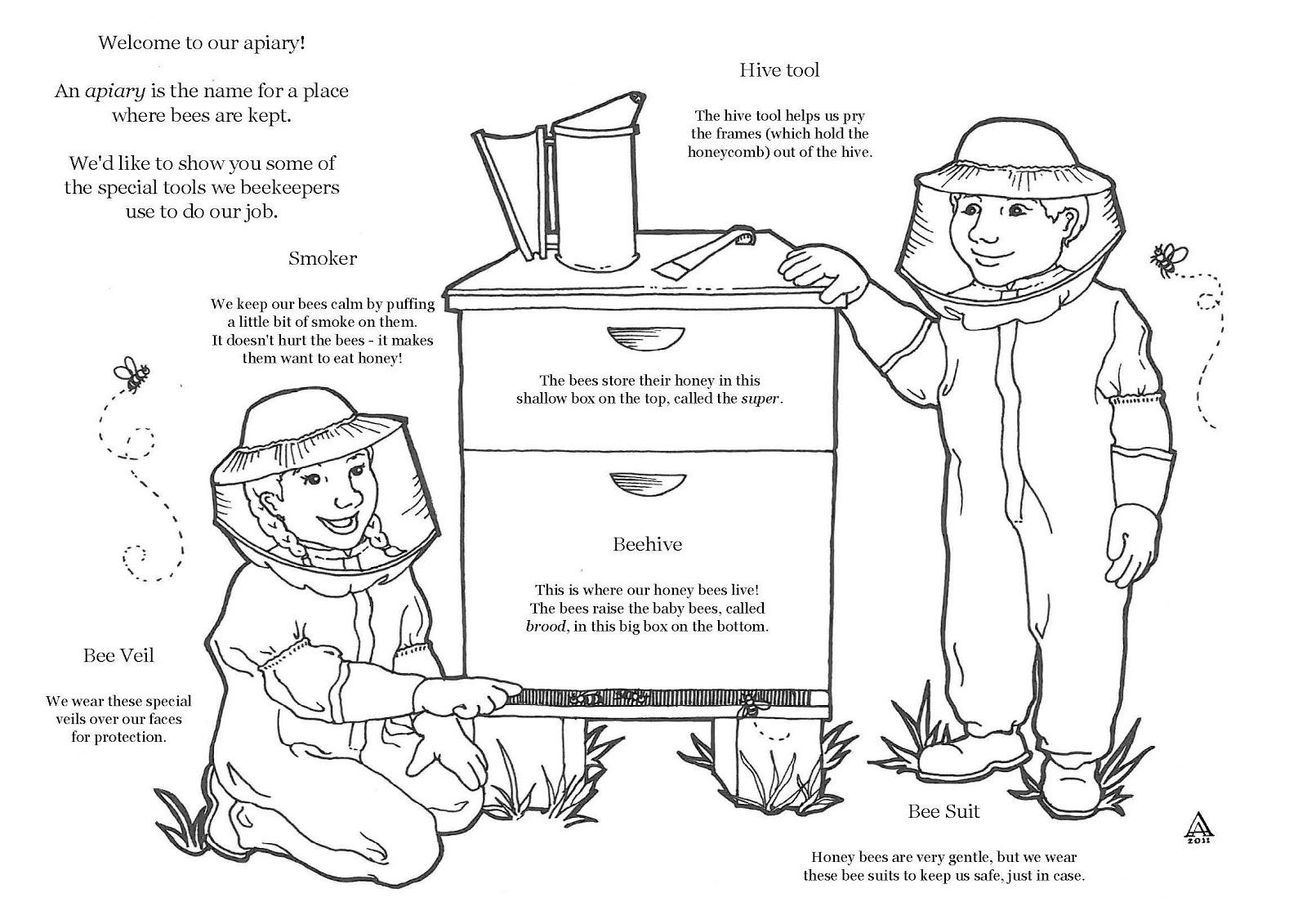 Pollination Worksheet