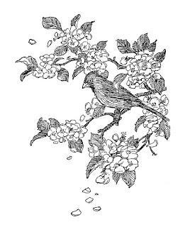 https://4.bp.blogspot.com/-5yEhsRjxV3M/V5edJ5dihYI/AAAAAAAAcrs/z3M2P92Q1uw0qIxTSJebTnTD0u46ZZESgCLcB/s320/bird-cardinal-cherry-tree-illustration.jpg
