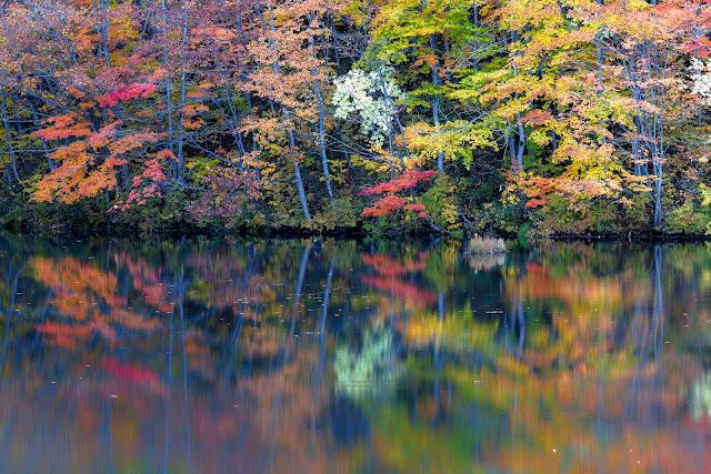 #photo #landscape #sigma #foveon #sdquattroh #japan #fukushima #kitashiobara #福島県 #北塩原村 #写真 #風景写真
