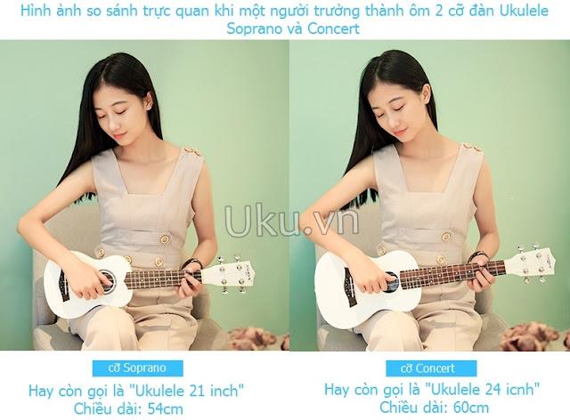 các loại đàn ukulele