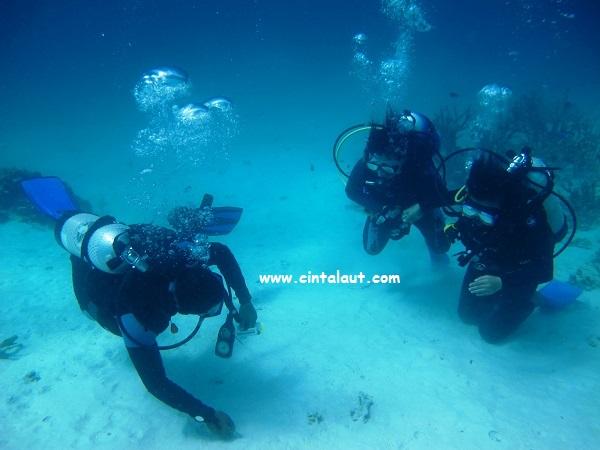 foto diving dan alatnya