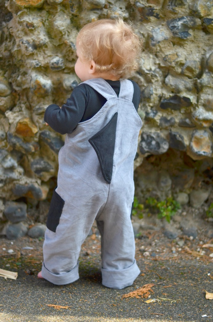 wild things, shark dungarees