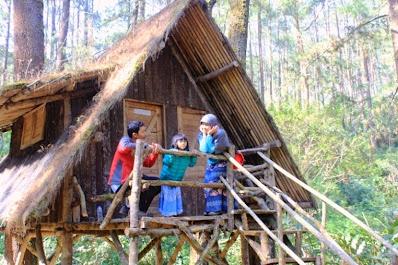 Rumah Pohon di Taman Buru Masigit Kareumbi