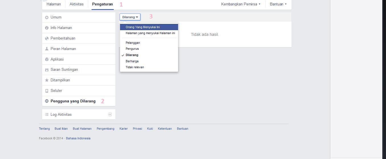 Cara mengetahui orang/halaman yang menyukai fanspage facebook terbaru 2014