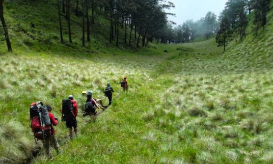 Pendakian Gunung Lawu Via Candi Cetho Jenawi Karanganyar Info
