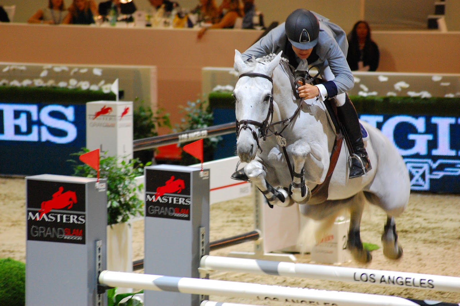 The Modern Equestrian