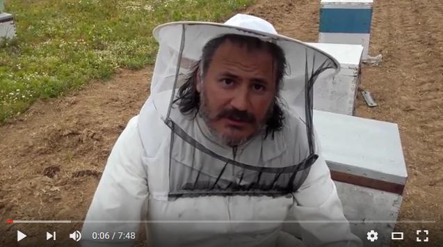 Ένα παράδοξο φαινομενο χτες στο μελισσοκομείο μας VIDEO