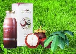 Obat Herbal Kelenjar Getah Bening | Distributor Obat ...