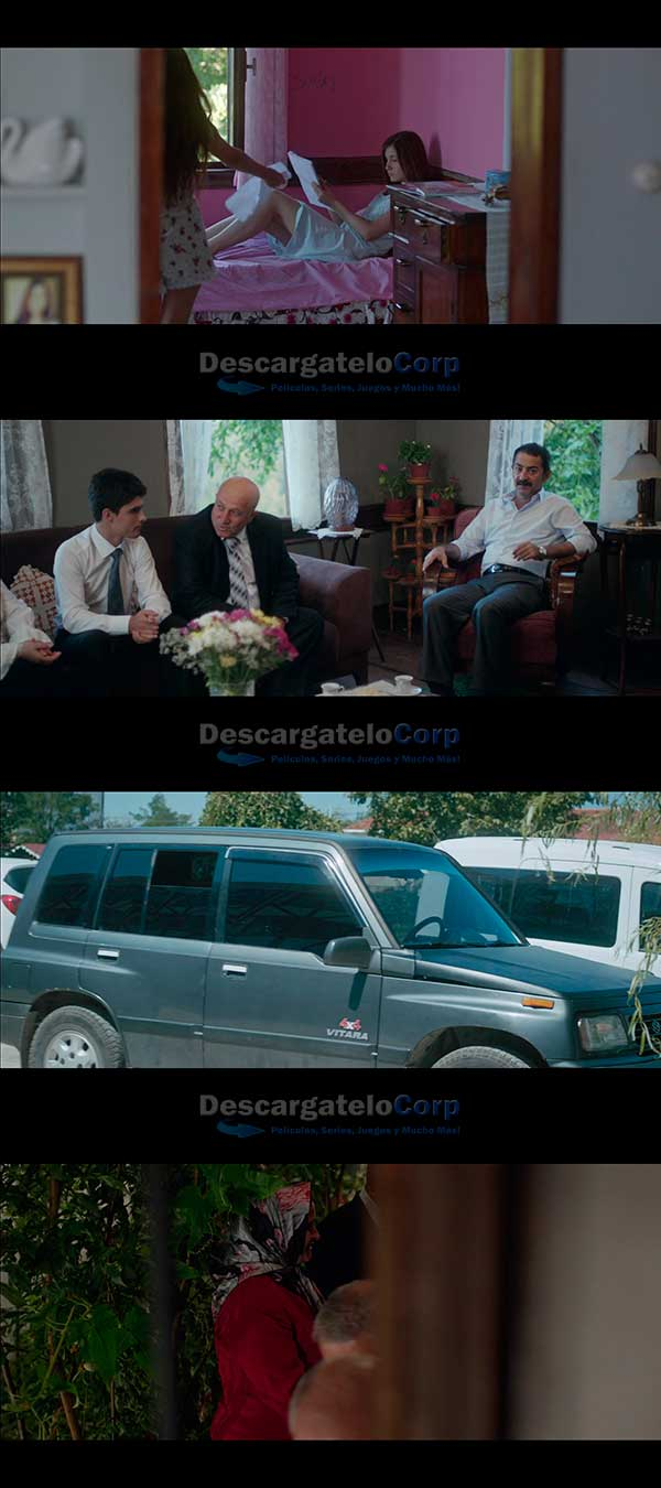 Mustang Belleza Salvaje HD 720p Español Latino