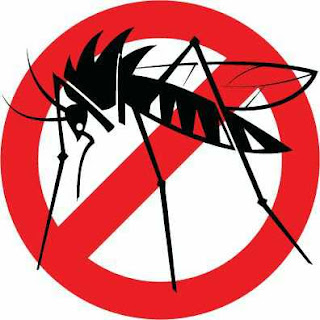 Dengue Fever, Causes, Symptoms, Prevention, Treatment and Vaccine
