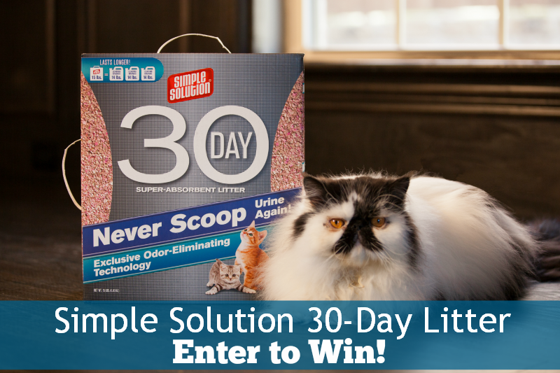 Simple Solution Super Absorbent Cat Litter giveaway