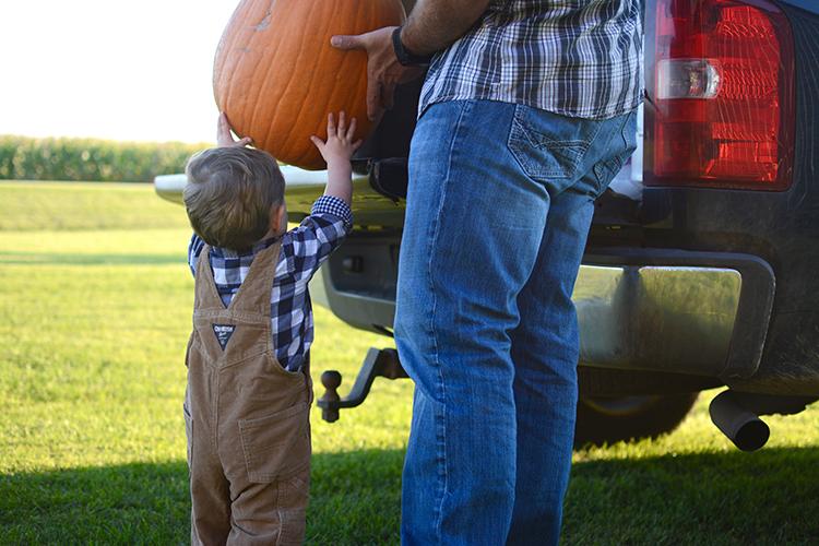 Pumpkin Patch, Fall | My Darling Days