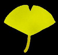 落ち葉のイラスト「いちょう」
