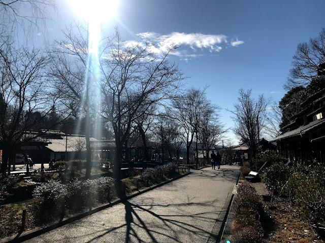 イメージ:冬の小道