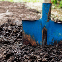 Dig Deeper With ARBICO Organics