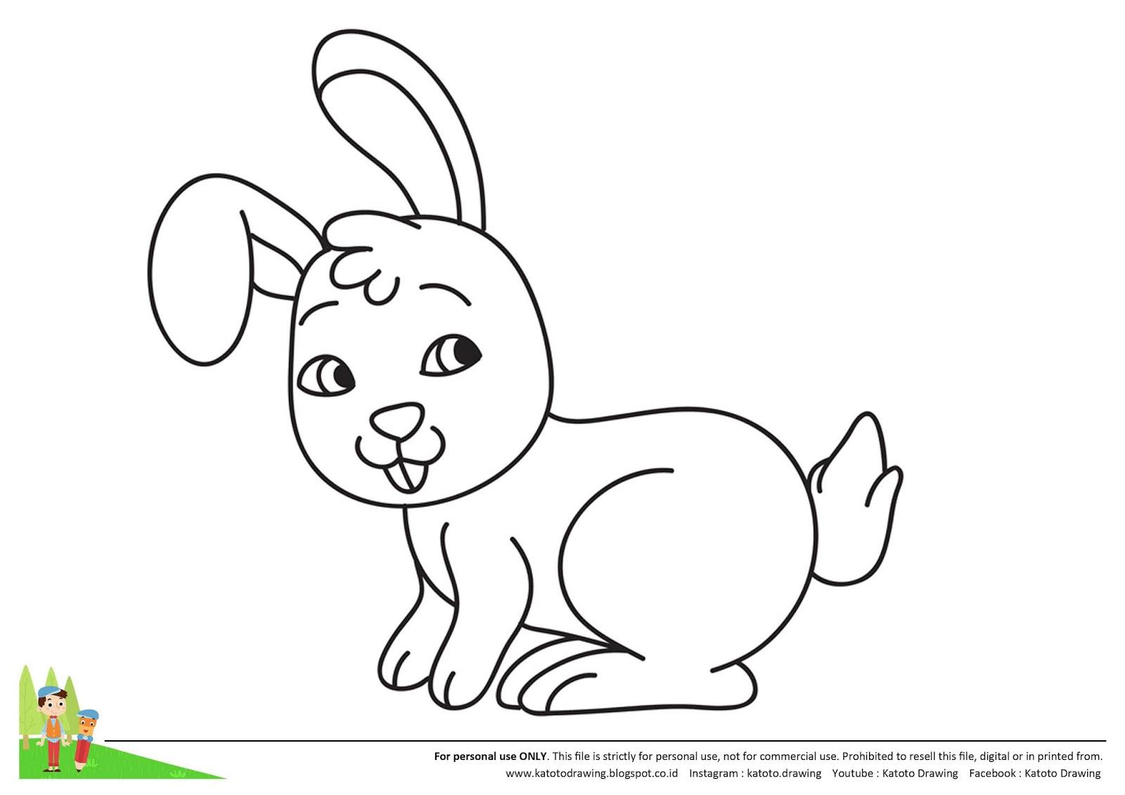 Katoto Drawing Tutorial Langkah Menggambar Dan Mewarnai Kelinci