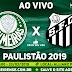 Jogo Palmeiras x Santos Ao Vivo 23/02/2019