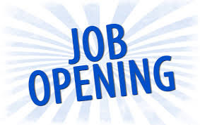 Job Openings For SEO Fresher,Jobs,Jobs In bangalore,Fresher Jobs In bangalore.