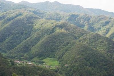 vista de la Cordillera desde la ruta