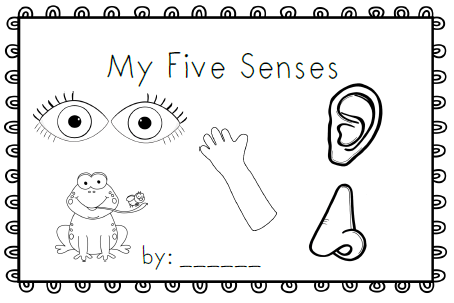 Mrs. Black's Bees: My Five Senses~ emergent reader