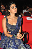 Pooja Hegde choli saree at DJ Duvvada Jaggannadham music launch ~  Exclusive 11.jpg