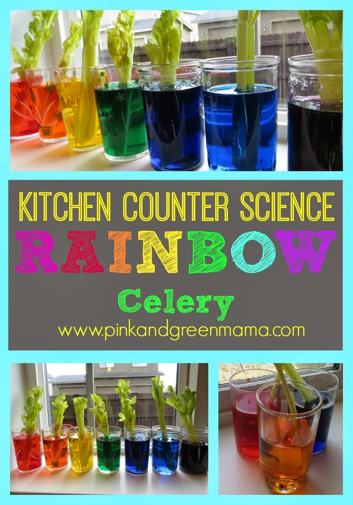 Pink And Green Mama Kitchen Counter Science With Kids