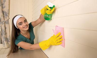 come-pulire-muri-esterni-di-casa