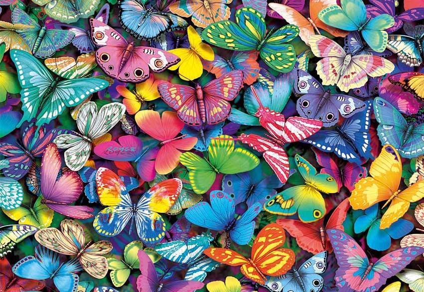 Patada De Caballo: Mariposas