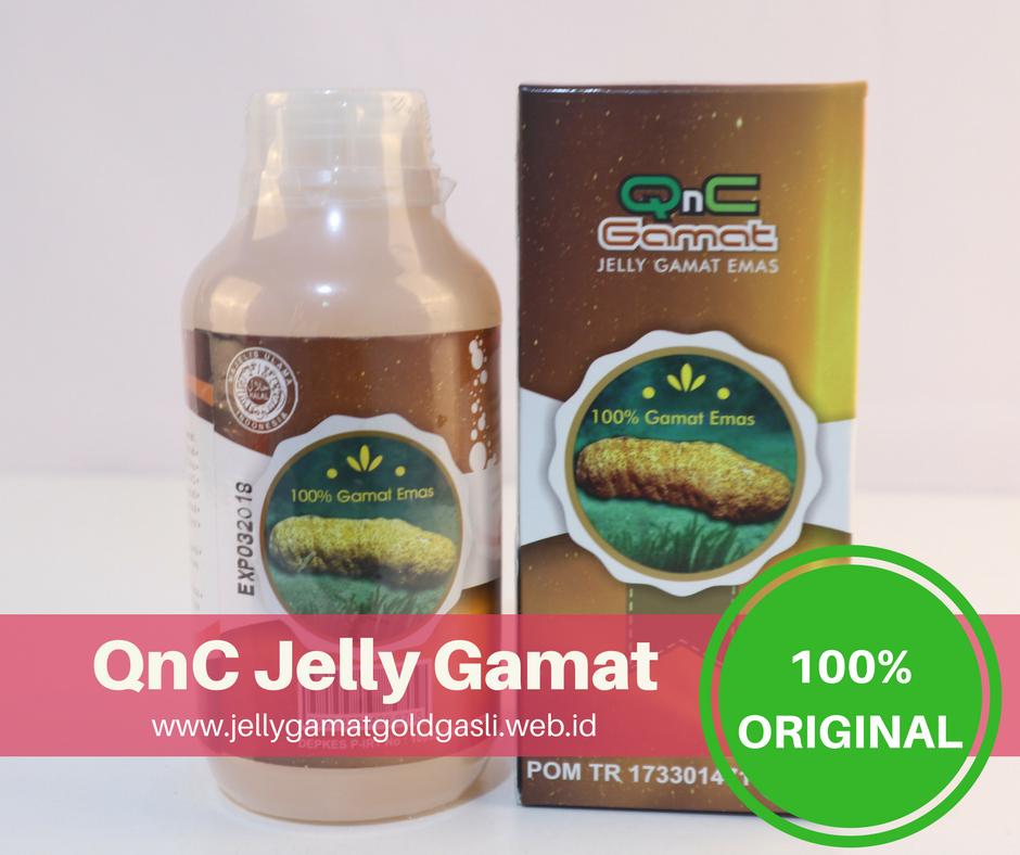 Obat Penyakit Typoid Di Apotik QnC Jelly Gamat Asli