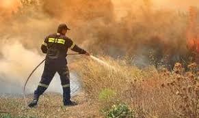 Γιάννενα: Πυρκαγιά Στο Βοτονόσι Μετσόβου Σε Εξέλιξη Επιχείρηση Της Π.Υ