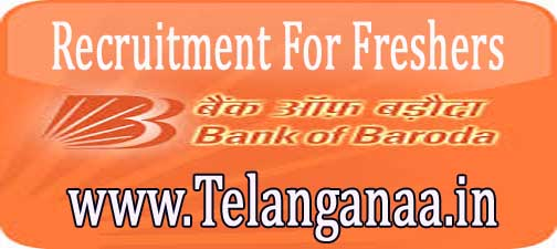 Bank of Baroda Recruitment 2016-2017 For Freshers  Apply